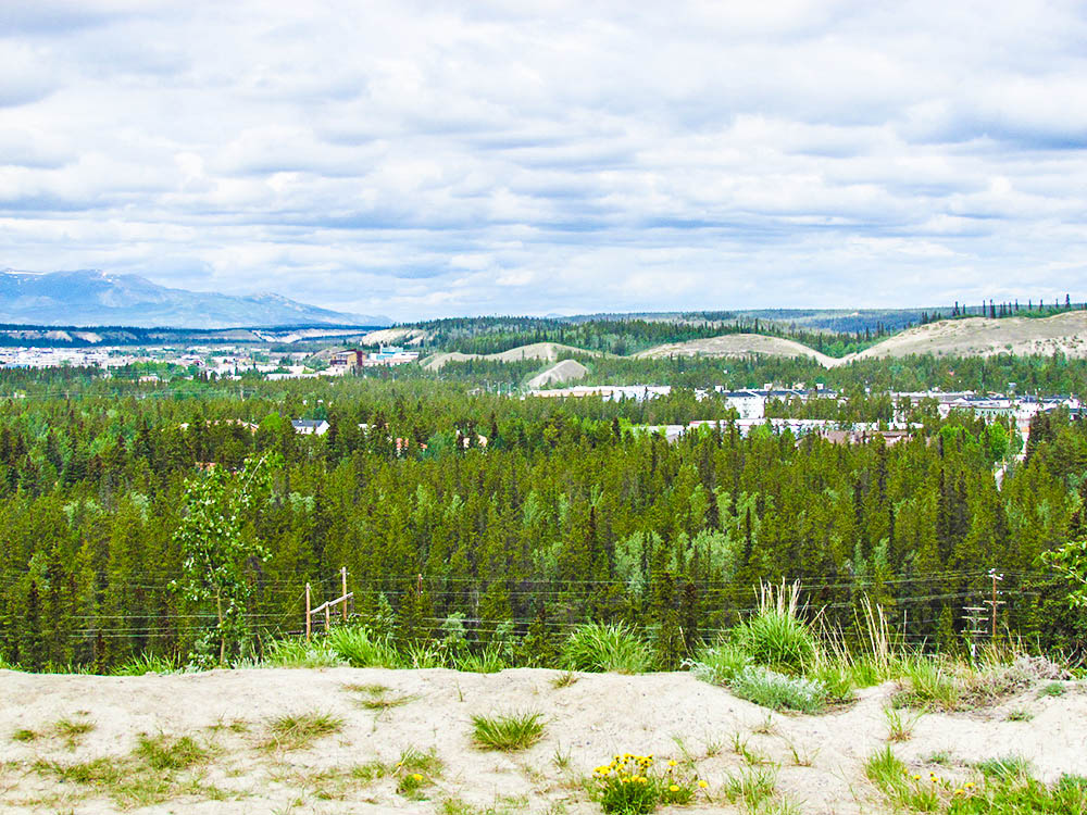 The City of Whitehorse view from Miles Canyon way