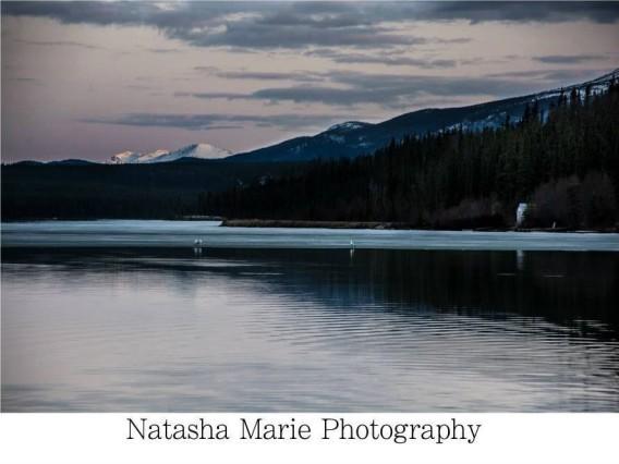 Walking along schwatka lake in the Yukon always presents wonderful and captivating images! Photo: Natasha Marie